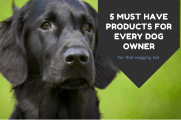 Must Have Dog Products