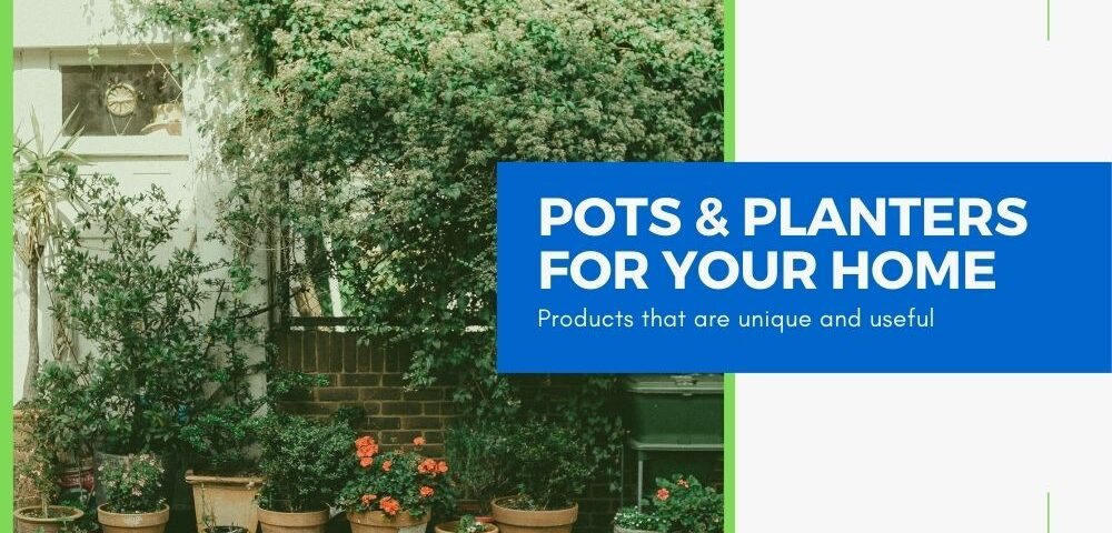 best pots and planters