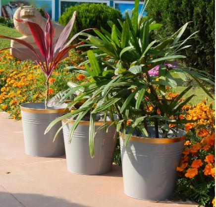 large metal planter